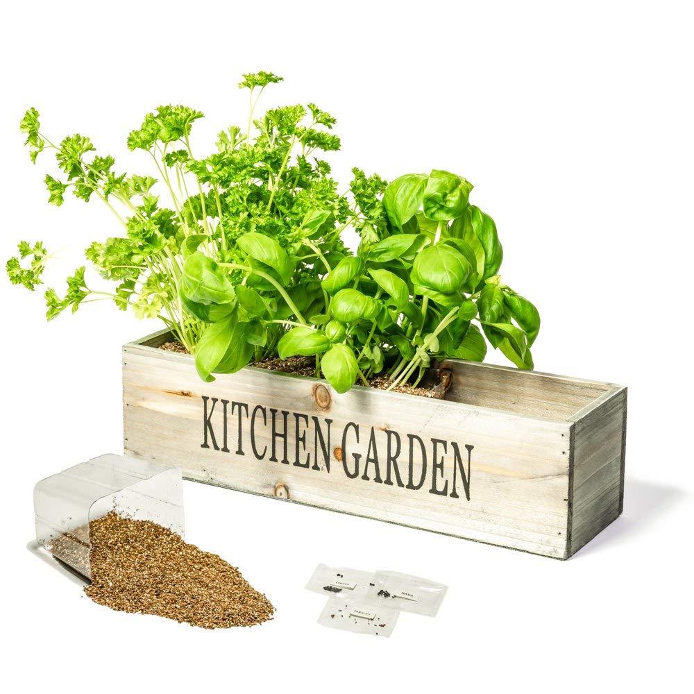 Küchengarten für jede Küche - praktisches und stilvolles Geschenk!