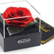 Rose in einer Geschenkbox
