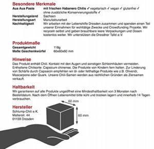 Anleitung der Geschenkbox