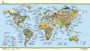 Die Fußball Weltkarte - alle Fakten illustriert