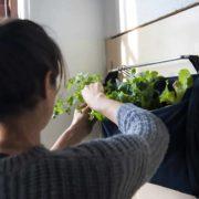 Balkon Pflanzentasche