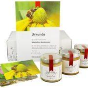 Patenschaft für ein Bienenvolk